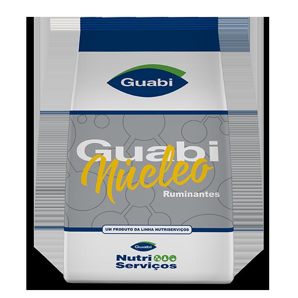 GUABINÚCLEO INICIAL 40 LS
